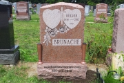 erected in Mount Hope Cemetery, Boston