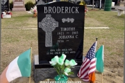 black granite, skin letters, Celtic Cross, shamrocks - Irish design for single plot
