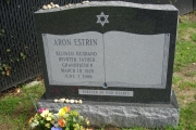 Our Jewish monument designs - Lynn Ma