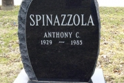 Black granite single upright headstone