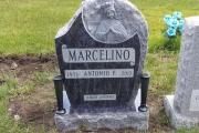 marcellino grave - Pine Grove Cemetery - Lynn Massachusetts
